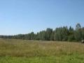 Земельный участок в д. Афинеево